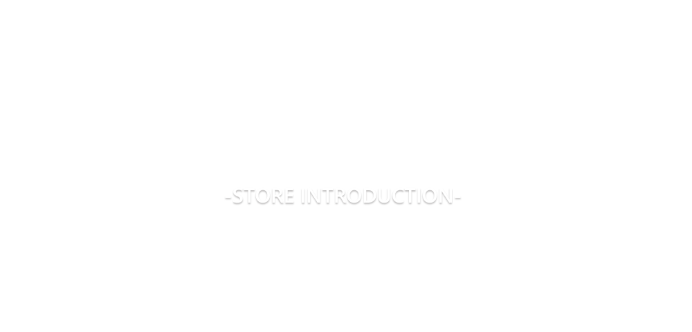 STORE INTRODUCTION